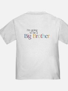 Secret (Brother) - T