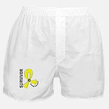 Ewing Sarcoma Survivor 12 Boxer Shorts