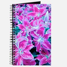 Glorious Lilies Journal