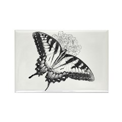 Charchol butterfly Rectangle Magnet (100 pack)