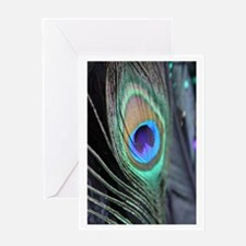 Peacock Feather Festive Photograph Greeting Cards