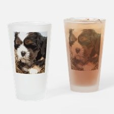 Shi tzu puppy Drinking Glass