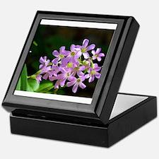 Tiny Jewels Keepsake Box