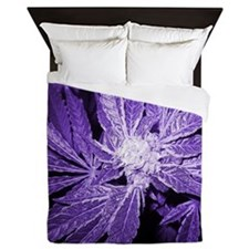 Purple Cannabis Queen Duvet