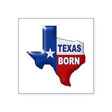 TEXAS BORN Sticker