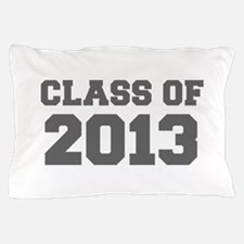CLASS OF 2013-Fre gray 300 Pillow Case