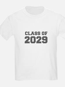 CLASS OF 2029-Fre gray 300 T-Shirt