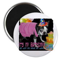 IT'S MY BIRTHDAY Magnet