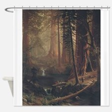 Giant Redwoods Shower Curtain