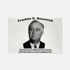 FDR: Democracy Rectangle Magnet