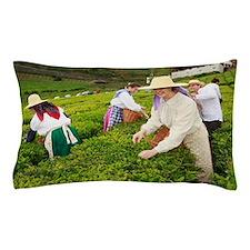 Porto Formoso tea gardens Pillow Case