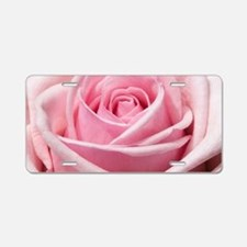 Light Pink Rose Close Up Aluminum License Plate