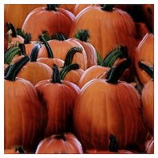 Fall Pumpkin Pile Poster