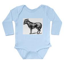 Donkey 2 Body Suit