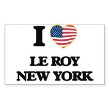 I love Le Roy New York Decal