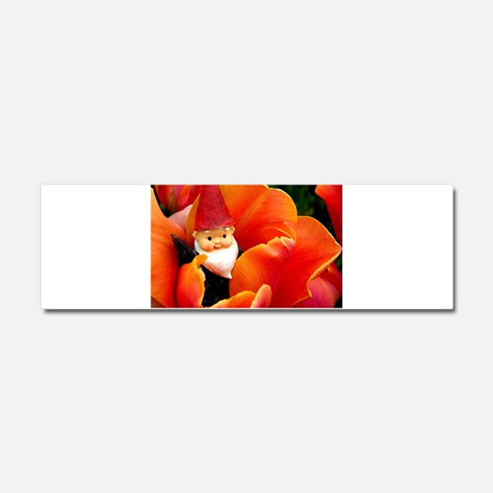 Cute Gnome Car Magnet 10 x 3