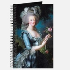 Cute Blue roses france shutters Journal