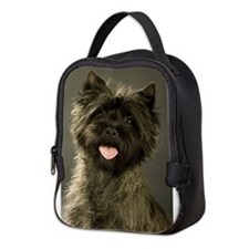 2008headshot_sadie.jpg Neoprene Lunch Bag