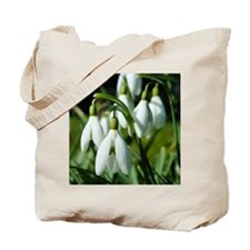 Snowdrops (flowers) Tote Bag