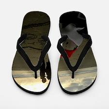 Proposal Gnome Flip Flops