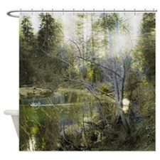 The Enchanted Forest at Nightfall Shower Curtain