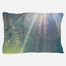Trees of the Enchanted Forest Pillow Case