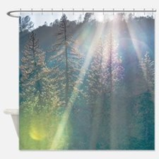 Trees of the Enchanted Forest Shower Curtain