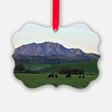 Mount Diablo Ornament