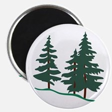 Evergreen Trees Magnets