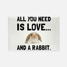 Love And A Rabbit Magnets