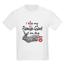 Kiss My Flemish - light gray T-Shirt