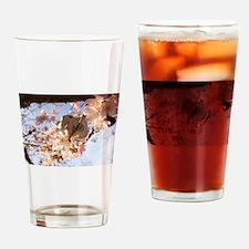 Growing Neko Drinking Glass