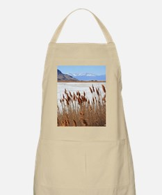Great Salt Lake Utah Apron