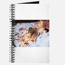 Growing Neko Journal