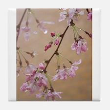 Sakura Drops Tile Coaster