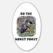 Hokey Pokey Squirrel Oval Decal
