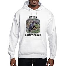 Hokey Pokey Squirrel Hoodie