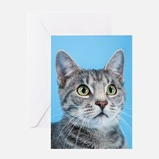 Beautiful Green Eyed Kitty Cat Greeting Cards