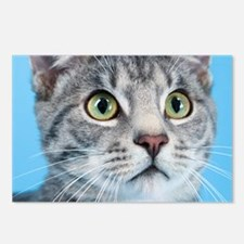 Beautiful Green Eyed Kitty Cat Postcards (Package