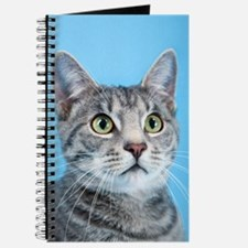 Beautiful Green Eyed Kitty Cat Journal