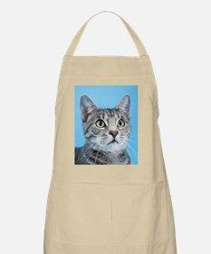 Beautiful Green Eyed Kitty Cat Apron