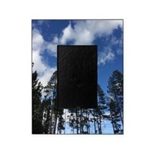 Sky Forest Picture Frame