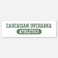 Caucasian Ovcharka athletics Bumper Bumper Bumper Sticker