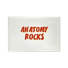 Anatomy~Rocks Rectangle Magnet
