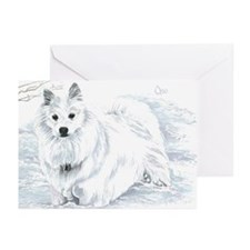 Oso Greeting Cards (Pk of 20)
