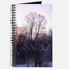 Whitetail Deer Winter Journal