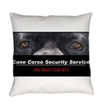 security.png Everyday Pillow