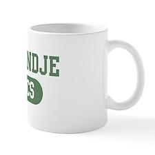 Kooikerhondje athletics Mug