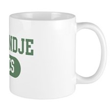 Kooikerhondje athletics Small Mug