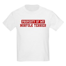 Property of Norfolk Terrier T-Shirt